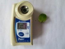 須藤物産トマト屋さんのブログ-須藤物産2013.10月糖度調査エメラルド