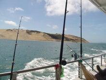 ニュージーランド、オークランドの船釣り日記
