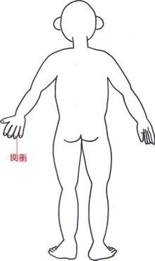 はりとお灸の豐春堂のブログ-関衝①