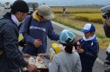 浄土宗災害復興福島事務所のブログ-2013100506ふくスマ稲刈り⑫おにぎり