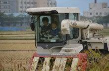 浄土宗災害復興福島事務所のブログ-2013100506ふくスマ稲刈り⑪コンバイン