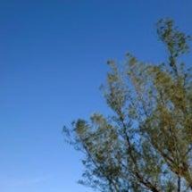 澄み切った青空