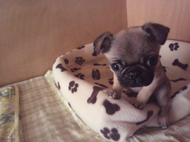 HAPPY BIRTHDAY 坂上忍オフィシャルブログ「綺麗好きでなにが悪い!」 Powered by Ameba