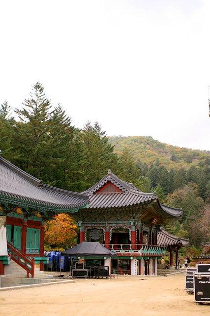 韓国・ソウルの中心で愛を叫ぶ!