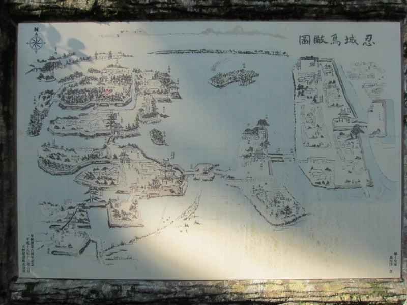 忍城/鳥瞰図