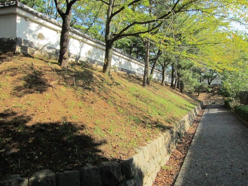 忍城/本丸の土塁