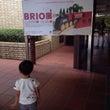 BRIO展