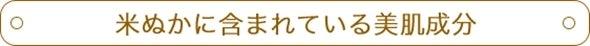 ❤ヨーキーまろんの成長日記❤