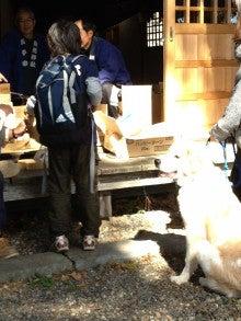 菅平高原シュナイダースキースクールのブログ