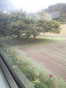 $メイブレラン潟さんのブログ-この木が北海道の入口