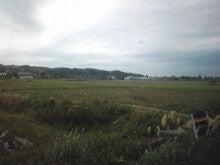 $メイブレラン潟さんのブログ-ただっ広い農園