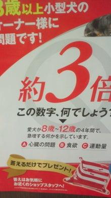 裏道-NEC_2227.jpg