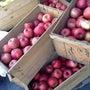 木箱の林檎。