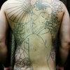 刺青★花魁(バックピース)ライン!の画像