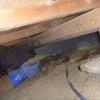 白蟻駆除は床下の高さとの戦いの画像