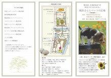 LUNAペットクリニック潮見 オフィシャルブログ-区民まつりパンフ1