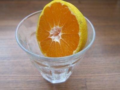 $チャレンジ アレンジ レシピ-みかんポン酢1