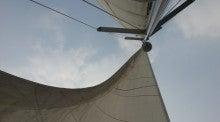海南潜水 hainandivingのブログ-ヨット3