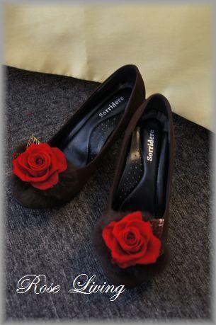 Rose Living