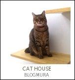 ネコハウス-ブログ村愛猫家