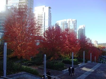 i Canada☆ベテランカウンセラーのいるバンクーバー無料現地留学エージェントのブログ-Oct 29'13 ⑩ i Canada