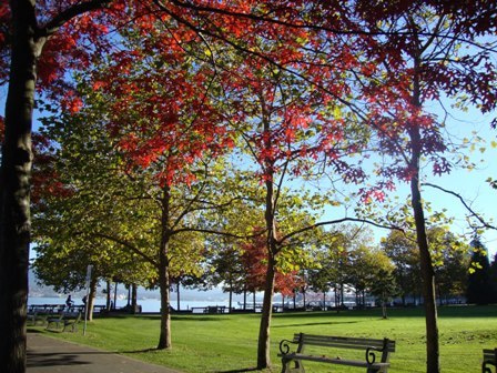 i Canada☆ベテランカウンセラーのいるバンクーバー無料現地留学エージェントのブログ-Oct 29'13 ② i Canada