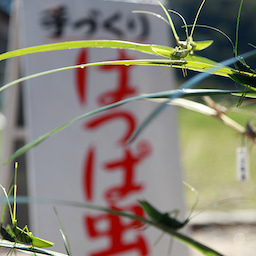 岩本家のデジカメプリント&ダビングサービス-2013103102