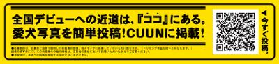 cuun (クーン)-cuun banner
