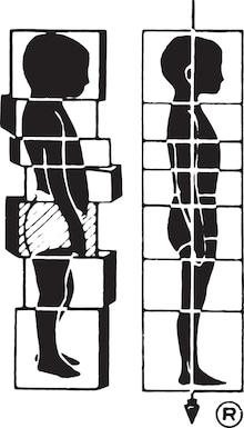 $名古屋刈谷40代から始める'美'からだづくりロルフィングで姿勢改善、女性の体の不調を解消!
