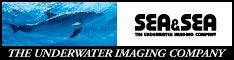 $世界の海を旅する水中写真家 古見きゅうのブログPowered by Ameba