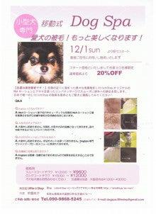 Little☆Step~ヒーリングケアサロン~幸せな時間-チラシ