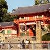京都の美容水の画像
