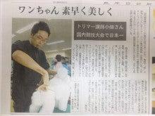 九州サンシャイングルーミングスクールブログ