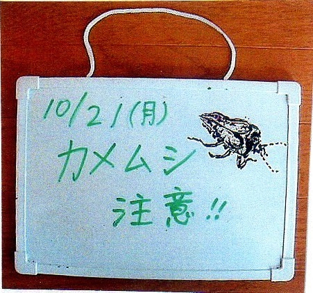 手稲山・発寒川からの手紙