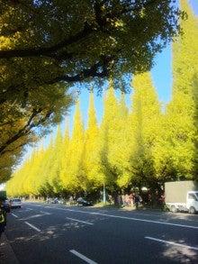 楢村海香 Official BLOG-131116_125613.jpg