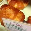 ルーク本店【クリームパン】@京都 久保田路 25.11.10の画像