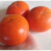 こんな大きな柿