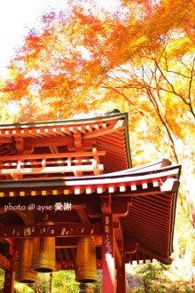 京都散歩の旅-京都嵐山 愛宕念仏寺の紅葉