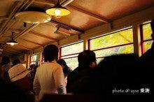 京都散歩の旅-紅葉漫喫!嵐山トロッコ列車