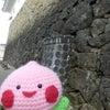 姫路城に登ったよ(^.^)の画像