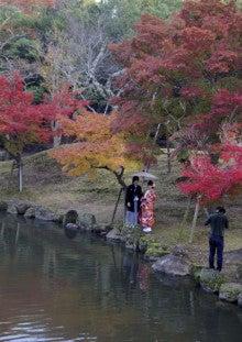 $πのブログ-奈良公園