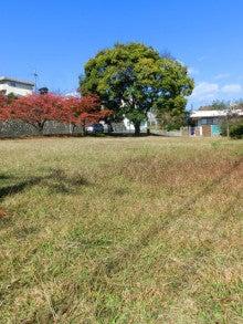 The last autumn of Shiroyama Park