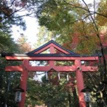 今年も京都へ1日目