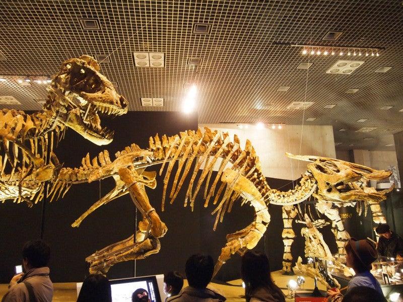 恐竜 展 上野