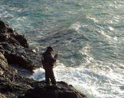 がまラー2号の釣りブログ