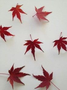 望月理恵オフィシャルブログ「mochiee's garden」Powered by Ameba-写真_ed.jpg