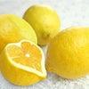 レモンでダイエット 実験君~♪の画像
