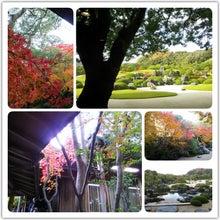 桜のいろいろないろ。-ImageForSharing.jpeg