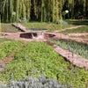 ウーリカビオアロマ庭園への画像