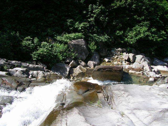 山道歩の【素敵な自然と楽しい山登り】